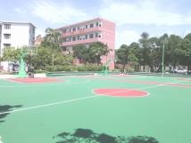 灵山县子才学校