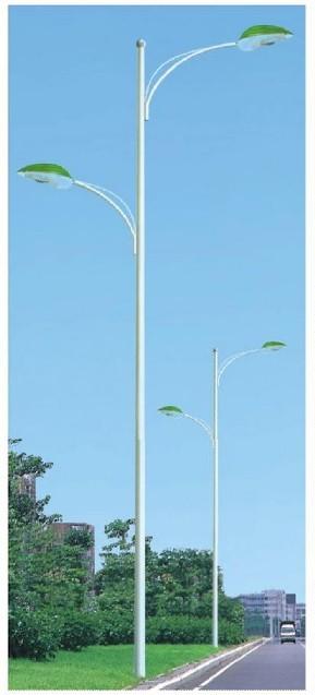 道路灯杆2