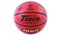 火车7401篮球