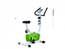 XG6760艾威立式健身车